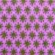 Wol & Co bloem ster